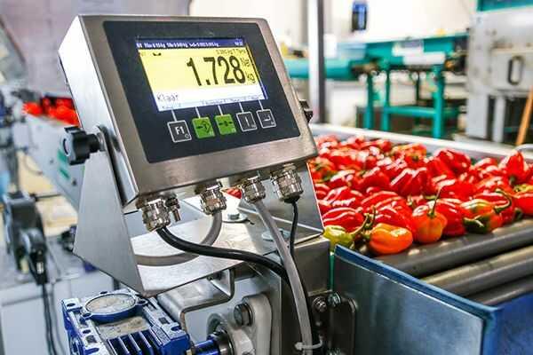 Installatie-indicator-voor-het-afvullen-van-paprika's