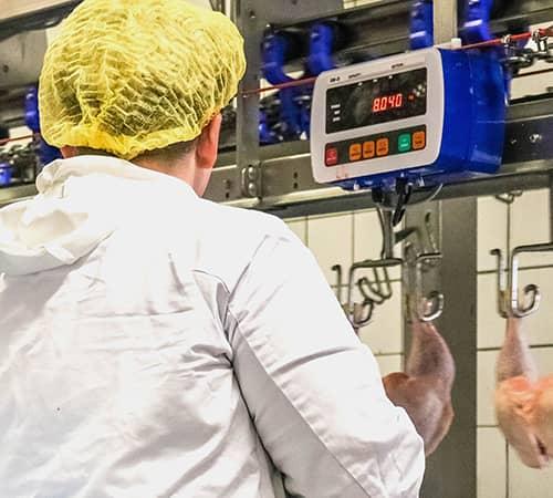 Professionele-weegschaal-voor-in-de-vleesindustrie